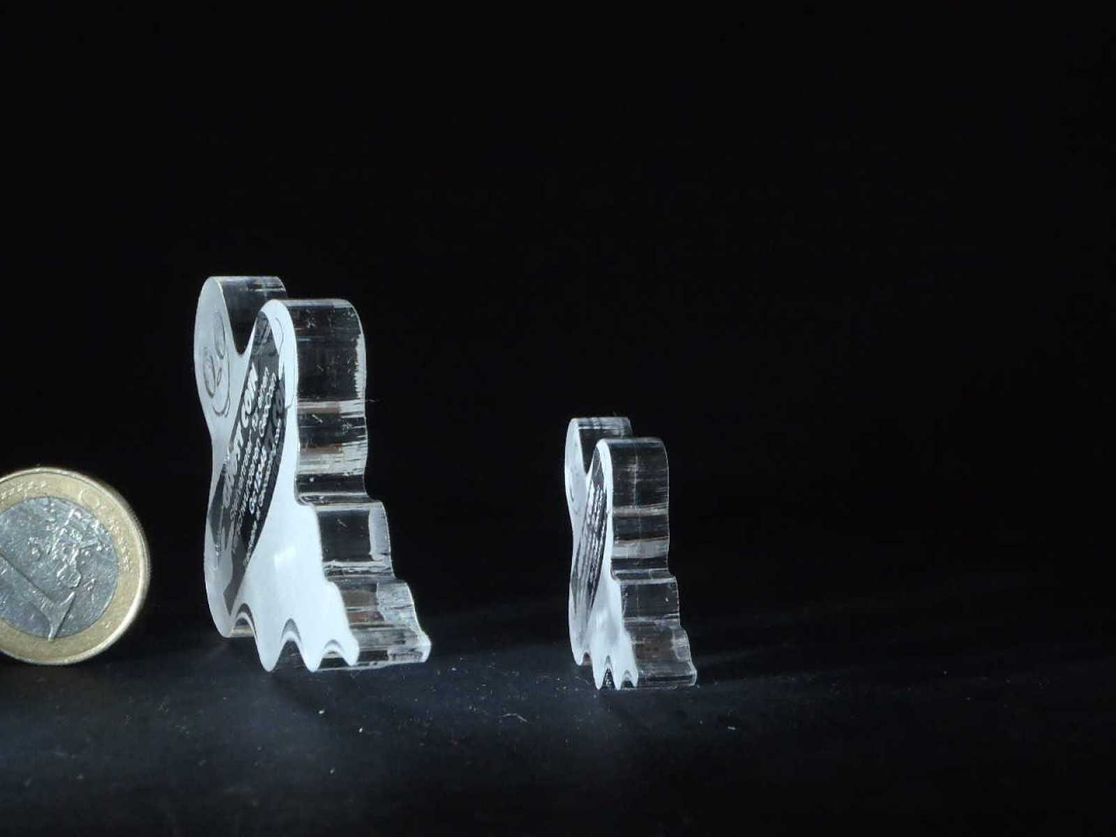 "Lost Geocoin ""The Ghost Coin #3"""